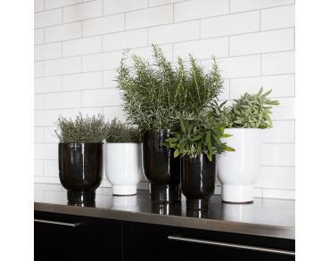 De plantenbak is mooi te combineren met meerdere plantenbakken
